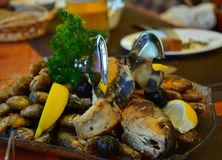 Poissons assortis dans le restaurant de mer Images stock
