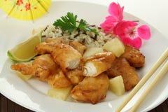 Poissons avec du riz Images stock