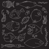 poissons comiques de dessin animé Images libres de droits