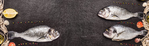 Poissons crus de dorado avec le filet de pêche, le citron et le poivre sur le fond en pierre noir, bannière Photo stock