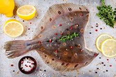 Poissons crus de flet, poissons plats Photographie stock libre de droits