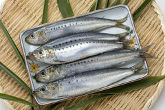 Poissons crus frais de capelan de sardine sur le plateau en bambou avec la feuille verte Image stock