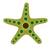 Poissons d'étoile Image stock