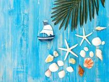 Poissons d'étoile et animal de mer Images libres de droits