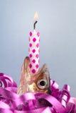 Poissons d'anniversaire Image stock