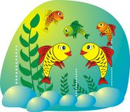 Poissons d'aquarium Image libre de droits
