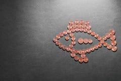 Poissons d'argent Photographie stock libre de droits