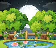 Poissons dans l'étang à la nuit illustration de vecteur