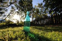 Poissons dans la bouteille Photo libre de droits