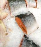 Poissons dans la glace sur le compteur dans le magasin photographie stock libre de droits