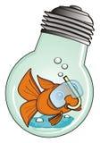 Poissons dans la lampe illustration libre de droits