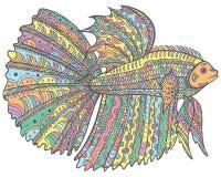 Poissons de betta de griffonnage de Zentangle - version colorée de page de coloration illustration libre de droits