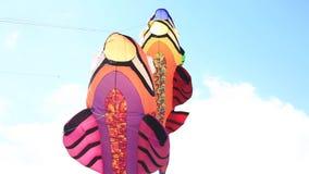 Poissons de cerf-volant de Flyng sur le ciel bleu banque de vidéos
