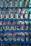Poissons de combat siamois (splendens de Betta) en ventes dans une bouteille Photos stock