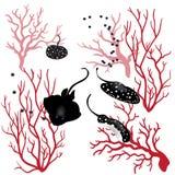 Poissons de corail et de rayon illustration stock
