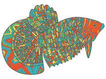 Poissons de griffonnage de Zentangle - version colorée de page de coloration Photos libres de droits