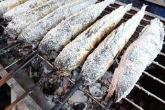 Poissons de gril avec du sel Photographie stock libre de droits