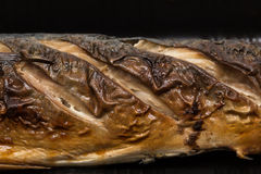 Poissons de maquereau de gril d'épicerie fine dans la mousse Photos stock
