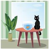 Poissons de observation de chat vilain Photos libres de droits