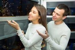 Poissons de observation de couples dans le petshop Photographie stock