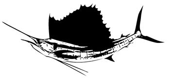 Poissons de pélerin atlantique III Vecteur Photo libre de droits