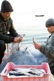 Poissons de prise de Fisher hors de réseau photos libres de droits