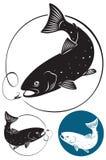 Poissons de truite illustration libre de droits