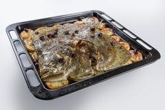 Poissons de turbot en four de moule avec des olives de pommes de terre et aromatique photo libre de droits