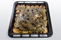 Poissons de turbot en four de moule avec des olives de pommes de terre et aromatique photographie stock libre de droits