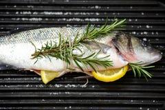 poissons sur un gril Images libres de droits