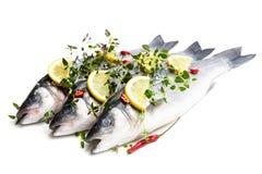 Poissons entiers frais de bar de mer avec le citron et les épices d'isolement sur un blanc images stock