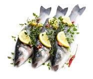 Poissons entiers frais de bar de mer avec le citron et les ?pices d'isolement sur un blanc images libres de droits