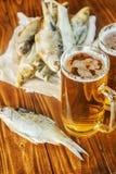Poissons et bière secs Photos stock