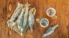 Poissons et bière secs Images stock