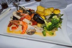 Poissons et divers fruits de mer Photo stock