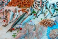 Poissons et fruits de mer fins en Sicile Photo libre de droits