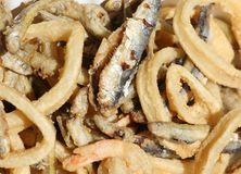 Poissons frits et une sardine et un certain calamari images stock