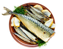 Poissons fumés et calmar de fruits de mer de plat Image stock