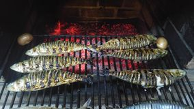 Poissons grillés Photo stock