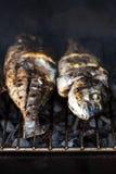 Poissons grillés avec des épices sur la fin du feu  Griller le dorado de poissons Photographie stock libre de droits