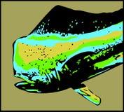 Poissons masculins de dauphin de Dorado - vecteur Photographie stock libre de droits