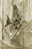 Poissons pêchés dans le filet sur la barrière Photos stock