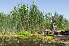 Poissons pêchés par garçon sur l'amorce Image stock