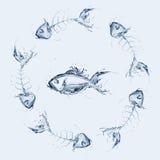 Poissons parmi des arêtes de poisson Photographie stock