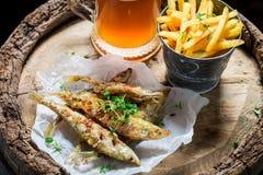 Poissons rôtis délicieux d'éperlan avec de la bière froide et des pommes chips Photo libre de droits
