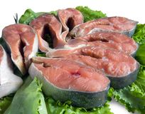 Poissons rouges Images stock