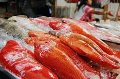 Poissons rouges sur le marché de fruits de mer Images libres de droits