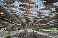 Poissons salés Photographie stock libre de droits