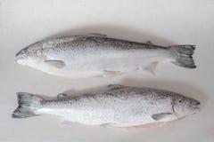 Poissons saumonés crus sur la table Photo libre de droits