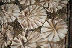 Poissons secs 38 Images libres de droits